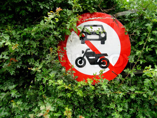 Traffic sign in hedge.