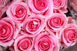 Billede af 'rose, indendørs, bryllup buket'