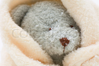 Michle constantinialtopressmaxppp teddy bear wrapped in blanket image of teddybear cold softness altavistaventures Images
