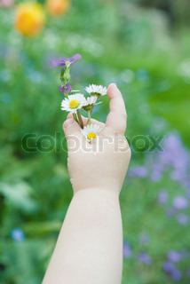 Image of 'children, hand, flower'