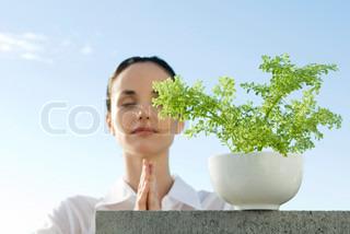 Billede af 'meditation, potteplante, velfærd'