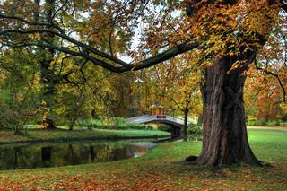 Billede af 'november, lyse, ro'