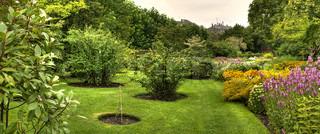 Billede af 'bagagerum, planter, park'