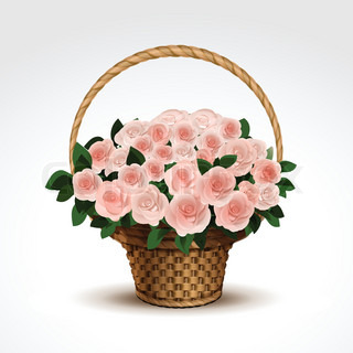 Basket of Pink Roses Isolated