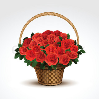 Basket of Red Roses Isolated