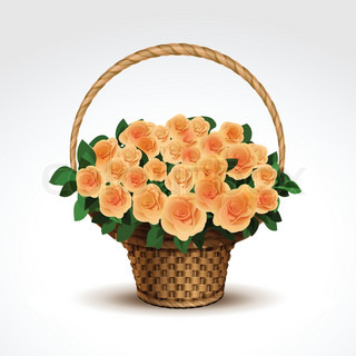 Basket of Yellow Roses Isolated