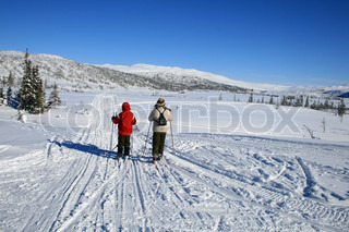 Image of 'norway, winter, skiing'