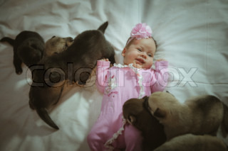 Image of cute little girl in pink suit and puppies on white background