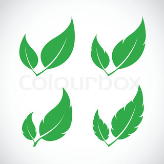 Leaf Icon Png - Free Icons and PNG Backgrounds