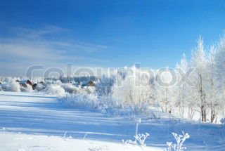 beautiful rural winter landscape with the village and the forest