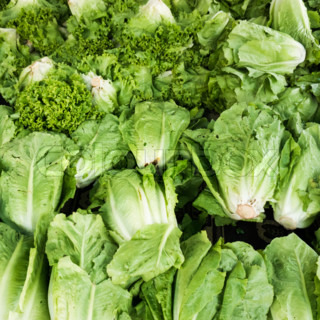 green vegetables in market.  Green cabbage and lettuce
