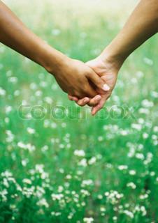 Bild von 'Wiese, Schutz, Zuneigung'