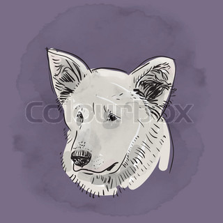Head, muzzle the dog. Shepherd. Sketch drawing. Black contour on a purple grunge background. vector