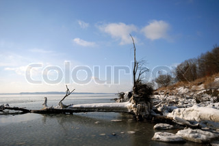 Wild Winter. Ice and snow on the beach. Little Belt winter coastline. Denmark.