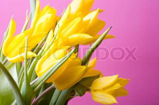 Billede af 'bloom, blomst, bouquet'
