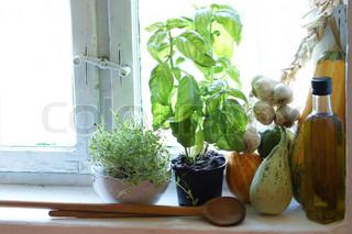 Billede af 'køkken, potteplante, rustik'