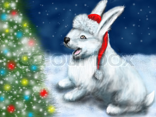 christmas and rabbit