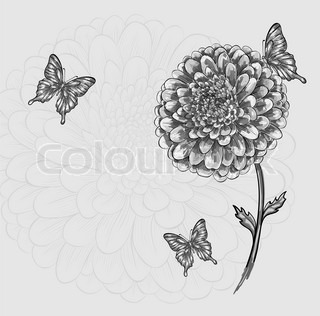 beautiful black-and-white flower with butterflies