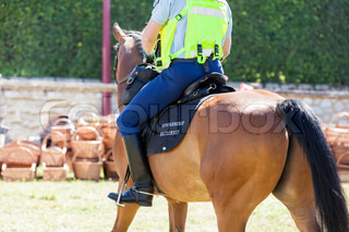 french mounted gendarme