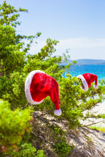 Red christmas hat on coniferous branch on white beach