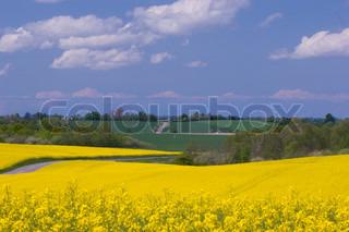 Billede af 'landbruget, global, landlig'