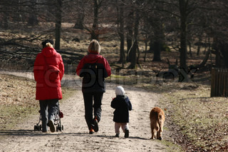 dog  (golden retriever) with a family on a forest path