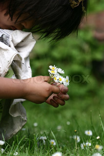 close up of face of  child  hand picking up a a  daisy flower in the grass