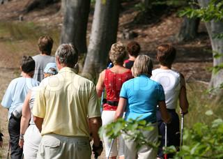 Billede af 'gåtur, aktivitet, ældre'