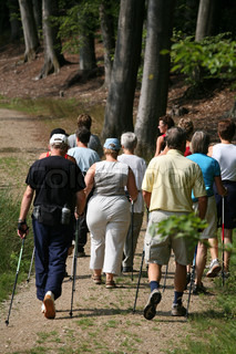 training nordic walking in a forest  in denmark