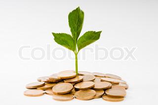 Billede af 'valuta, sæsoner, besparelse'