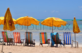 Sunchairs in a beach