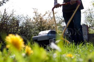 Billede af 'græsslåmaskine, gartner, havearbejde'