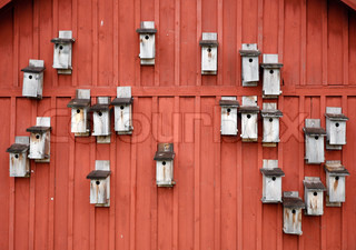 Traditional red Swedish farm gable with many nesting boxes at springtime.