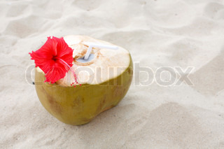 Fresh coconut with hibiscus on a beach