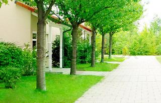 Billede af 'villa, foråret, Sæson'