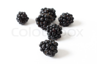 Blackberries on white background