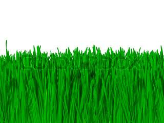 Billede af 'landbruget, close-up, sollys'