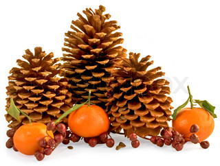 Three Pine Cones With Berries, Pinole and Oranges