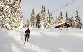 Image of 'cross country skiing, norway, skiing'