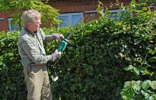 Bild von 'Garten arbeiten, Rentner, im Freien'