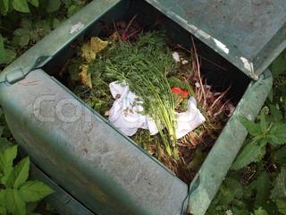 Billede af 'kompost, affald, mad'