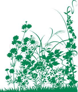 Vektor af 'clipart, planter, græsplæne'