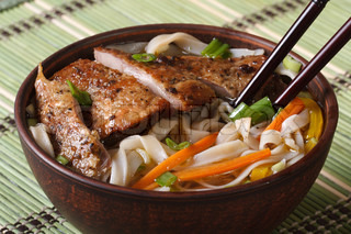 Asian soup with duck and rice noodle close-up horizontal