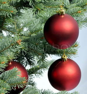 Red christmas balls on the fir