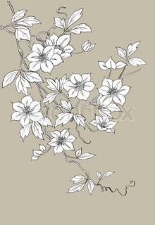Vektor af 'mønster, zen, blomst'