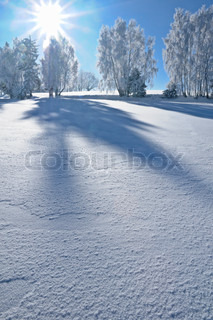 Image of 'winter, snow, sunshine'