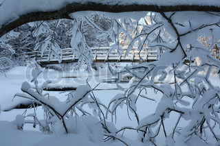 Image of 'winter, snow, river'