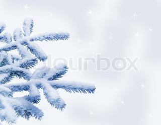 Gran dækket af sne