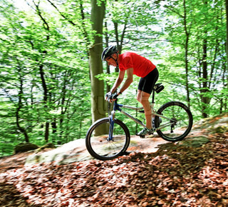 Athletic Senior bicycle with mountain biking in the woods
