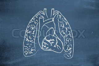 Lungs drawn on blackboard